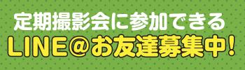 定期撮影会に参加できるLINE@お友達募集中!